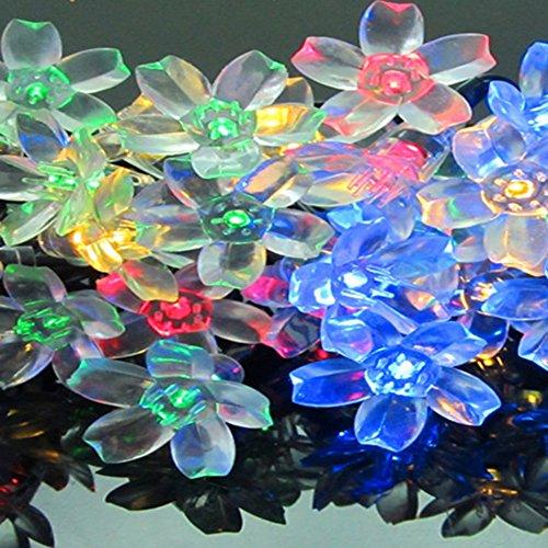 XYD 1.2W 2V100MA Solare fiore Luci della Stringa LED Fiore Decorativo Luci di Natale, Interna ed esterna usare, Ideale per la Cerimonia Nuziale, Partito, Luci Halloween ,Decorazioni di festa, Multicolore 50LTH