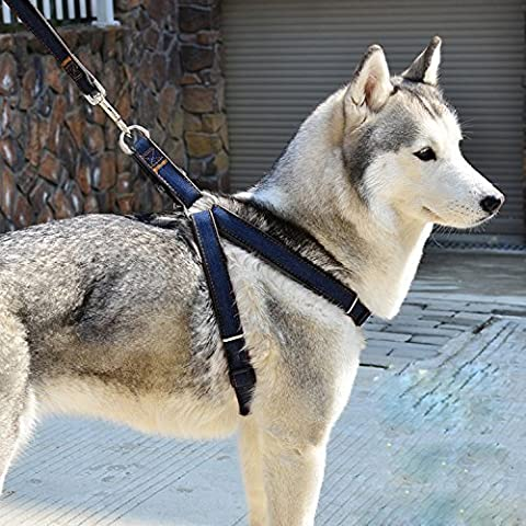 No-Pull Padded Adjustable Dog Harness Vest Heavy Duty Denim Pet Lead Leash Set for Large/Medium/Small/Dogs