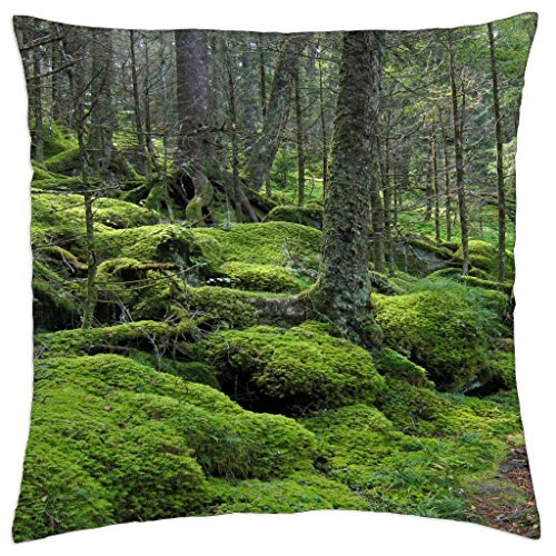 baxter-creek-trail-in-great-smoky-mountains-national-park-tennessee-throw-pillow-cover-case-18