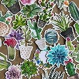 Lot de stickers super mignons cactus et plantes grasses pastel pour votre ordinateur portable bouteille d'eau et album par Navy Peony (28 pièces)