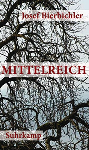 Licht, Starke Holz (Mittelreich: Roman (suhrkamp taschenbuch))
