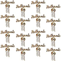 nu-Lite Lucky Jewellery Ladkewale Gold Plated Brouch/Brooch Pin for Men & Women (Pack of 16)