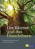 Die Bäume und das Unsichtbare: Erstaunliche Erkenntnisse aus der Forschung