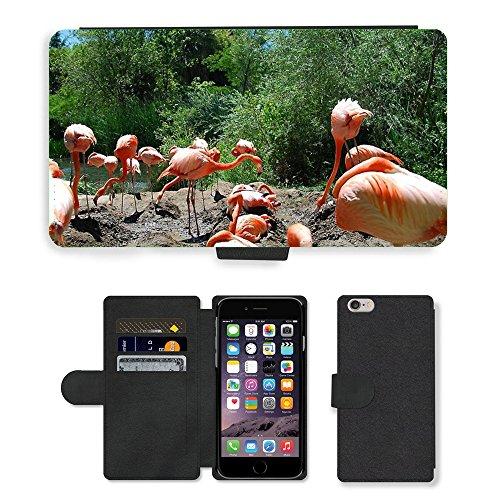 Just Mobile pour Hot Style Téléphone portable étui portefeuille en cuir PU avec fente pour carte//m00138854Flamingo Tropical Oiseaux Exotiques haut//Apple iPhone 6Plus 14cm