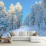 Worryd HD Drucken Poster Bild HD Schnee Landschaft Fototapete Wohnzimmer TV Sofa Hintergrund Wandbild Modern, 200x140 cm (78.7 by 55.1 in)