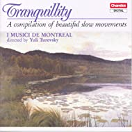Tranquillity - A Compilation Of Beautiful Slow Movements