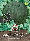 Obstsamen - Wassermelone Sugar Baby von Sperli-Samen
