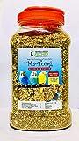 RENUKA SEEDS Ma-Tong 1 KG Premium Mixed Bird Feeder - Bottle Pack Mixed Seed Bird Food
