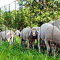 EIDER TITAN Schafnetz in 108cm 2 Spitz 50 m lang - Agilitynetz in Top Qualität - Auch für große Hunde als Agilitynetz - Standfest durch 2 Spitzen von Eider Landgeräte GmbH auf Du und dein Garten