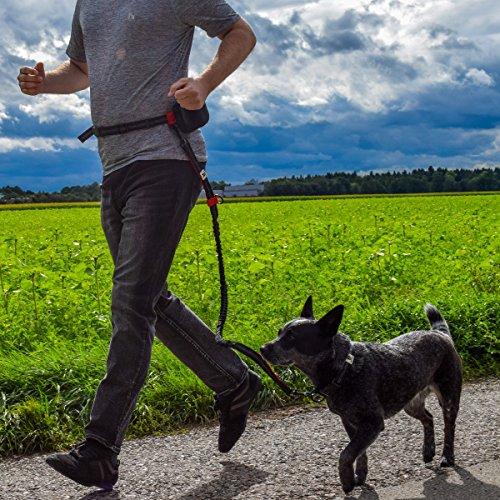 Joggingleine | Premium Hundeleine 120cm Bis 200cm | Elastisch Reflektierend Reißfest Gepolsterter Hüftgurt Hüftbeutel | Freihändig Laufen Spazieren Wandern - 3