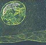 """Afficher """"Superorganism"""""""