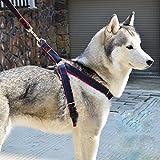 Aodoor Softgeschirr mit Leine Brustgeschirr Hunde Geschirr Sicherheitsgeschirr Denim Leine für Haustiere Hunde verstellbare(L rote)