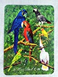 Best Friends By Ruth Maystead Bird Art P...