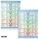 Duo-Set Schüßler-Salze komplett Nr. 1 bis 24 - Auf einen Blick (2018) Schnell orientieren, leicht verstehen und selbst anwenden (Basismittel und Ergänzungsmittel)