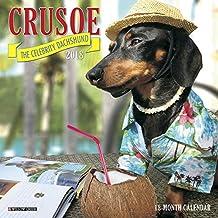 Crusoe the Celebrity Dachshund 2018 Calendar
