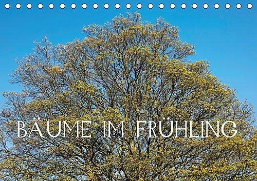 bume-im-frhling-ch-version-tischkalender-2017-din-a5-quer-blhende-bume-in-voller-pracht-im-frhjahr-m