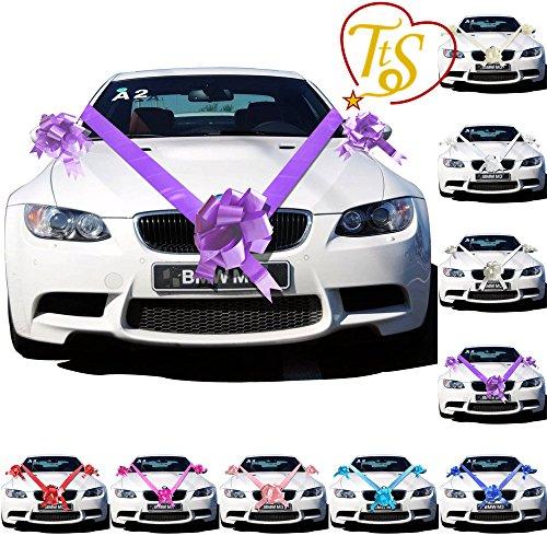 TtS 3 Bowknot 7M (Cadbury Lila) Band Antennenschleifen Schelifen Autogirlande Autodeko Hochzeit (Und Farbband Bogen)