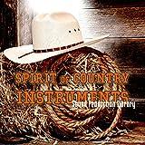 Country Instruments - Perfektes Original Wellenproben auf DVD