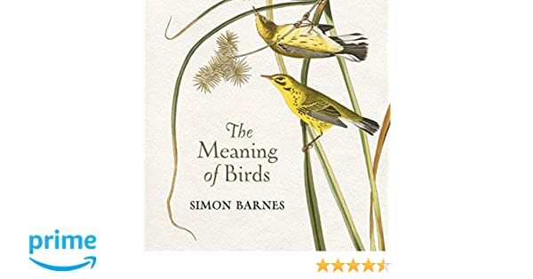 The Meaning Of Birds Amazon Simon Barnes 9781784970703 Books