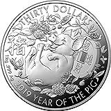 Power Coin Pig Schwein Lunar Year 1 Kg Silber Münze 30$ Australia 2019