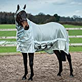 Derby House Pro Fly Rug Silver/Whispering Blue 6ft6