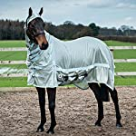 Derby House Pro Fly Rug 8