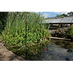 defenders all-in-one kit with 10 m pond fence (protects garden ponds and pools, humane heron deterrent) Defenders All-in-One Kit with 10 m Pond Fence (Protects Garden Ponds and Pools, Humane Heron Deterrent) 61p1Af78STL