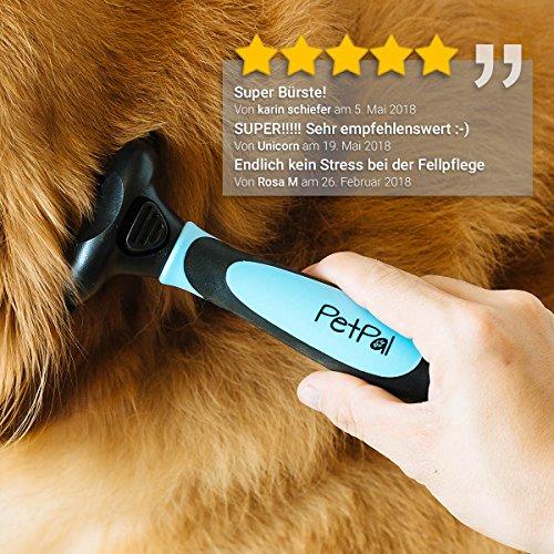 Zoom IMG-2 petp l pennello di cane