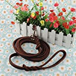 OFTEN 2.5m Hand-crafted Brown Soft Leather Dog Slip Over Loop Hoop Training Leash Lead Long Strong 12