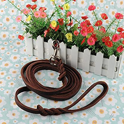 OFTEN 2.5m Hand-crafted Brown Soft Leather Dog Slip Over Loop Hoop Training Leash Lead Long Strong 6