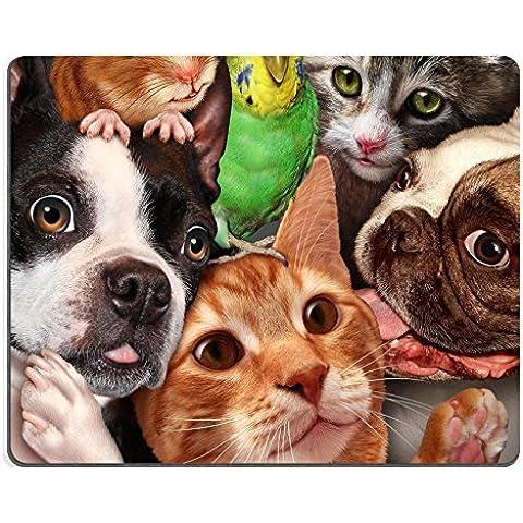 luxlady Gaming Mousepad ID: 39949085Perros Pet concepto del Grupo como un hámster y diseño de periquito Reunidos como un símbolo de cuidado de veterinario y apoyo o tienda de mascotas Elemento de diseño para Casa Animales Adv
