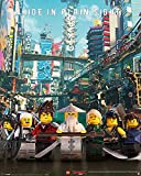Pyramid International legoâ Ninjago Film (Hide in Plain Sight) – Mini Poster – 40 x 50 cm, Kunststoff/Glas, Mehrfarbig, 40 x 50 x 1,3 cm