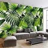 Hwhz Carta Da Parati Murale 3D Personalizzata Sud-Est Asiatico Foresta Pluviale Tropicale Foglia Di Banana Foto Di Sfondo Murales Da Parete Carta Da Parati Non Tessuta Moderna-150X120Cm