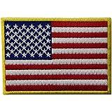 El Hierro Bordado Nacional De Los EEUU De La Bandera Americana Cosió En El Remiendo