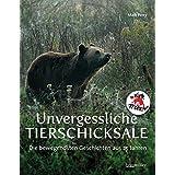 Unvergessliche Tierschicksale: Die bewegendsten Geschichten aus 25 Jahren