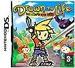 Drawn To Life (Nintendo DS)