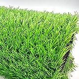WENZHE Prato Sintetico Tappeti Erba Sintetica Tappeto Verde Erba Artificiale 30mm Plastica Simulazione Ornamento, Taglia Personalizzabile (Color : 30mm, Size : 1x1m)