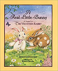 The Real Little Bunny: A Sequel to The Velveteen Rabit