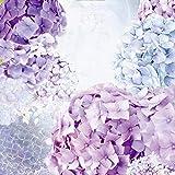 Artland Qualitätsbilder I Wandtattoo Wandsticker Wandaufkleber 90 x 90 cm Botanik Blumen Hortensie Collage Blau C7QS Blau und Pink Hortensie- Blütentraum im Sommer