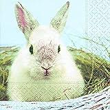 Servilletas (2 Juegos / 40 uds) 3 capas 25x25 cm Semana Santa Pascua Primavera ( Egg Thief 25x25cm )