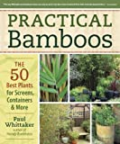 Practical Bamboos the 50 Best Plants for Screens, Containers & More