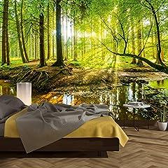 Idea Regalo - murimage Carta Parati Foresta 366 x 254 cm Legno Alberi Luce Solare fotomurali Poster Gigante Camera Bambini Soggiorno Include Colla