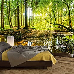 murimage Photo Wallpaper Forest 366 x 254cm Wood Trees Sunlight wall murals included Glue