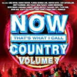Now That's What I Call Country Vol.7
