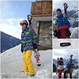 Skiweb Ski Transporteur - design classique