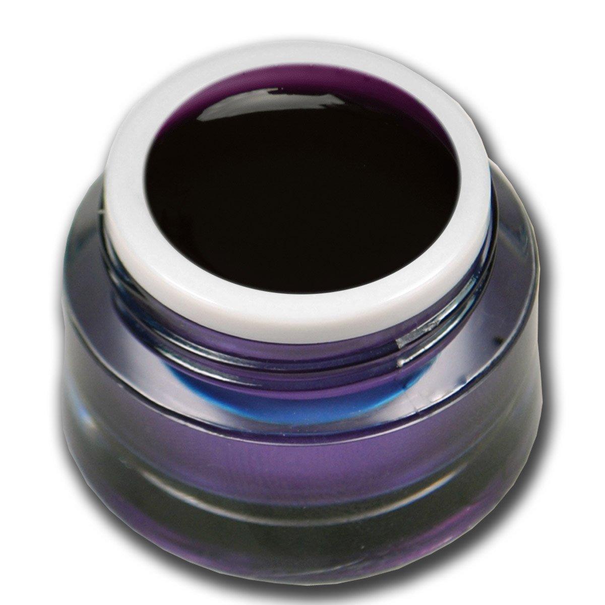 Premium Gel vetro colorato viola 5ml Gel UV Unghie Nail Art