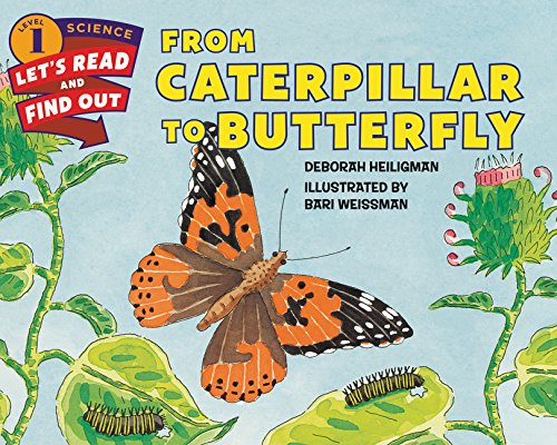 From Caterpillar to Butterfly (Let's Read and Find Out) por Deborah Heiligman
