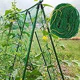 GREENLANS-1 Gartennetz, Nylon-Netz, Rankgitter, Gemüse, Bohnen, Pflanzen, Klettern, Grün, Nylon, grün, Einheitsgröße