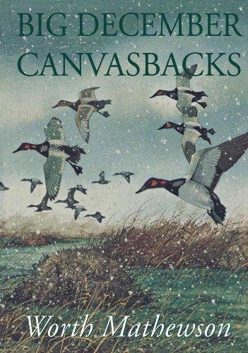 Big December Canvasbacks, Revised
