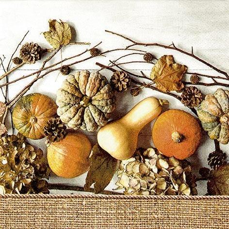 Kürbis Muddle of Pumkins 33 x 33 cm 3 lagig, Lunch Servietten Napkins Tissues, für den gedeckten Tisch, Party, Fest, Thema, Veranstaltung (Themen Für Veranstaltungen)